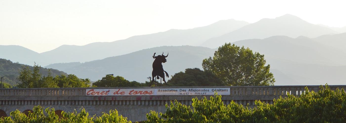 Toro Pont
